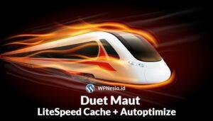 LiteSpeed Cache dan Autoptimize