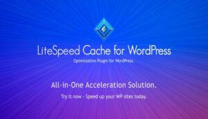LiteSpeed Versi 4.0